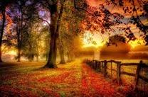 秋シーズン